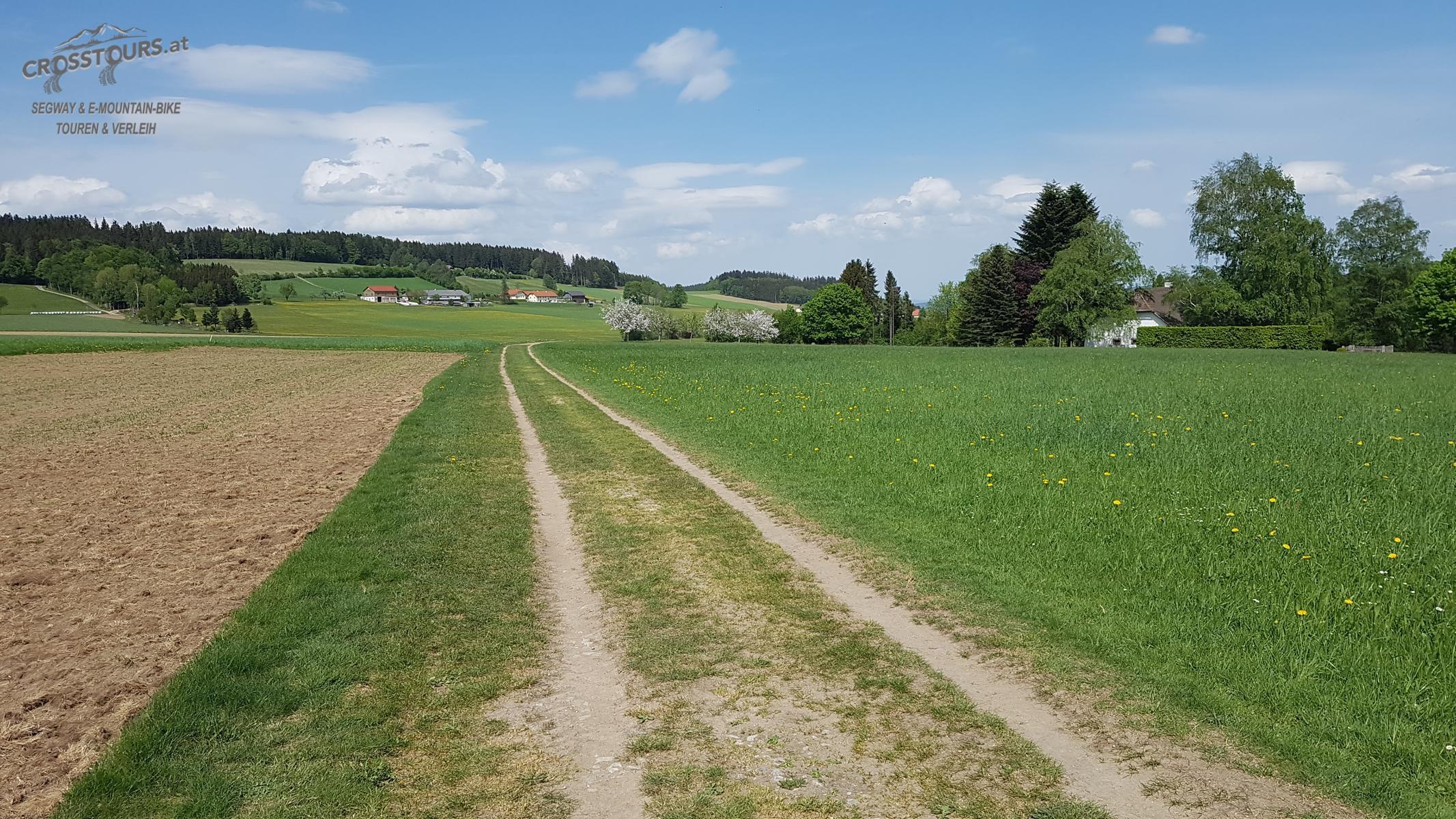 Segway Tour Bad Leonfelden Miesenwald Runde Crosstours.at Falkensteiner